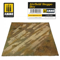 AIRFIELD STEPPE-DRY