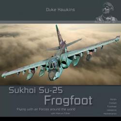 The Sukhoi Su-25 Frogfoot