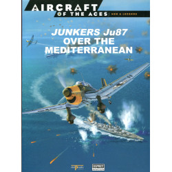 Junkers Ju87 over the...