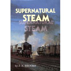 Supernatural Steam (Ghost)