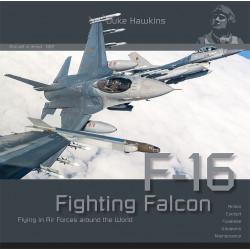 F-16 Fighting Falcon:...