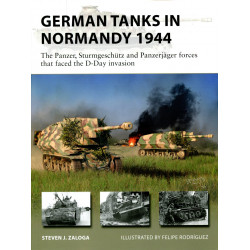German Tanks in Normandy...