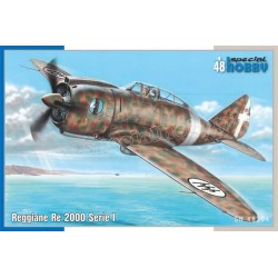 copy of P-51D Mustang