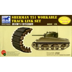 Sherman T51 workable track...