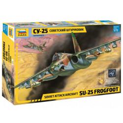 Soviet Attack aircraft...