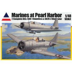 Marines at Pearl Harbor...