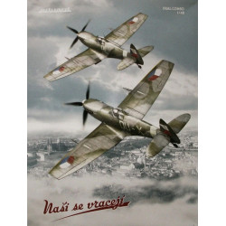Supermarine Spitfire - Nasi...