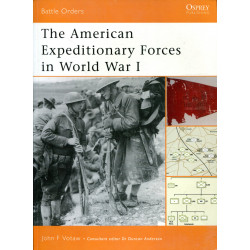 The American Expeditionary...