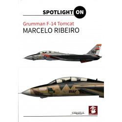 Spotlight ON - Grumman F-14...