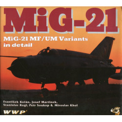 Mig-21 Fishbed in Detail