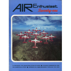 Air Enthusiast 21